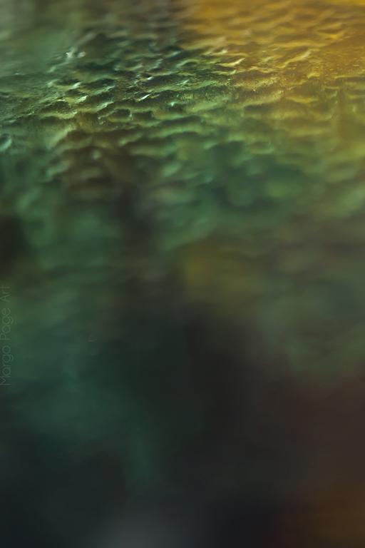 16margopage183m_SubmergedWeb